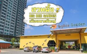 หาดใหญ่ | เที่ยวสวนผึ้ง Big Bee Garden