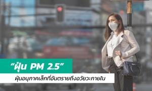 PM 2.5 ฝุ่นอนุภาคเล็กจิ๋ว ที่อันตรายถึงอวัยวะภายใน