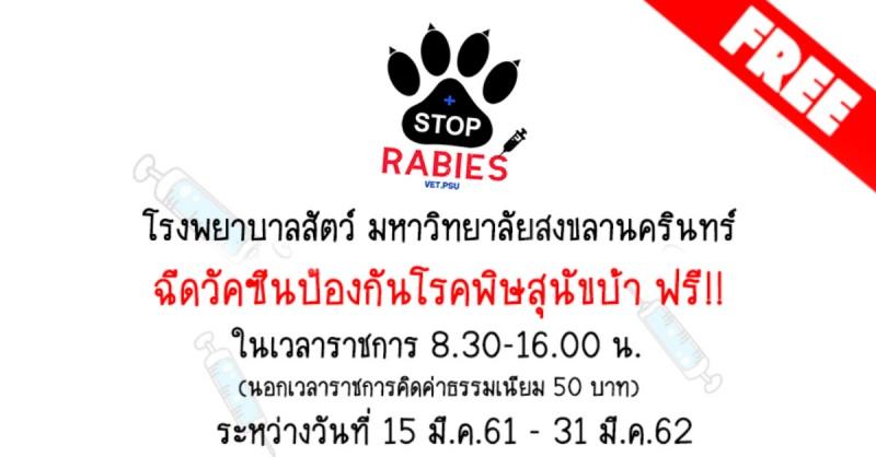หาดใหญ่ | ฟรี! ฉีดวัคซีนป้องกันโรคพิษสุนัขบ้า โรงพยาบาลสัตว์ ม.อ.