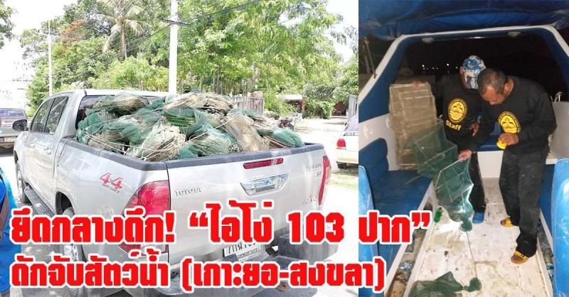 สงขลา   ยึดกลางดึก! ไอ้โง่ เครื่องมือดักจับสัตว์น้ำผิดกฎหมาย ในพื้นที่เกาะยอ  กว่า 103 ปาก