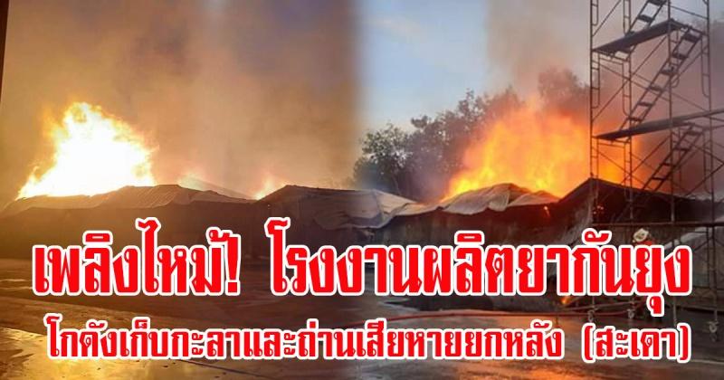 สะเดา | เพลิงไหม้! โรงงานผลิตยากันยุง โกดังเก็บกะลาเสียหายยกหลัง