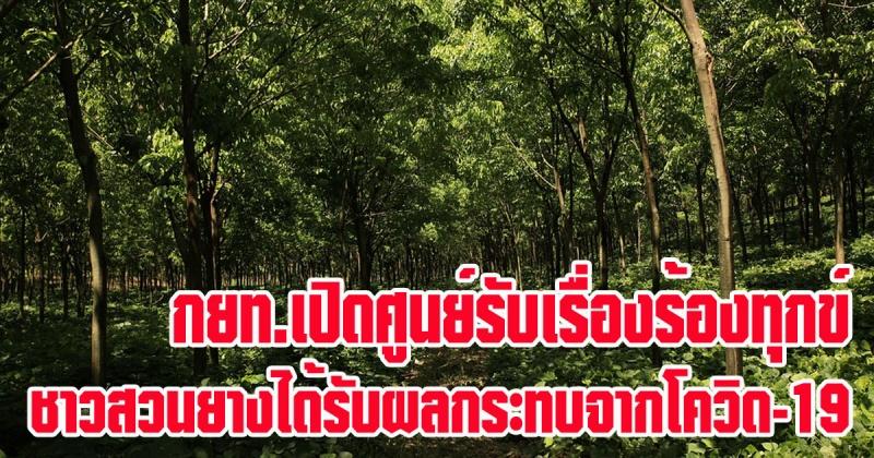 การยางแห่งประเทศไทย (กยท.) เปิดศูนย์รับเรื่องร้องทุกข์ยางพาราจากผลกระทบการแพร่ระบาดของโรค CovID-19
