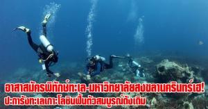 ทีมดำน้ำเฮ! ปะการังทะเลเกาะโลซินฟื้นตัวสมบูรณ์ดังเดิม
