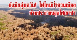 ควนเนียง | ห้ามประชาชนจุดไฟเผาป่า/ติดตามสถานการณ์ไฟไหม้ป่าพรุทุ่งเสม็ดบางนกออกอย่างใกล้ชิด
