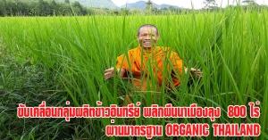 พัทลุง   ม.ทักษิณ ขับเคลื่อนกลุ่มผลิตข้าวอินทรีย์ พลิกผืนนาเมืองลุงกว่า 800 ไร่ ผ่านมาตรฐาน Organic Thailand