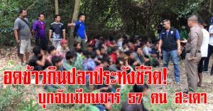 สะเดา | ตะลึง!พบแรงงานเมียนมาร์ 57 คน หลบซ่อนในป่า อดข้าวต้องหาปลาในลำห้วยประทังชีวิต