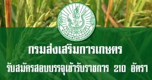 กรมส่งเสริมการเกษตร เปิดรับสมัครสอบบรรจุเข้ารับราชการ 210 อัตรา