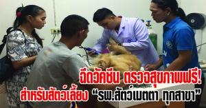 หาดใหญ่ | โรงพยาบาลสัตว์เมตตา Metta Animal Hospital จัดโครงการช่วยเหลือสัตว์เลี้ยง ฉีดวัคซีนพิษสุนัขบ้า กำจัดเห็บหมัด ถ่ายพยาธิ ตรวจสุขภาพ 12 ระบบ ฟรี!!!