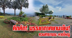 หาดใหญ่ | บรรยากาศยามเย็น! ประชาชนทยอยถ่ายภายภาพสวนดอกไม้ที่ทางเทศบาลจัดไว้ต้อนรับนักท่องเที่ยว