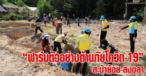 สะบ้าย้อย | โครงการฟาร์มตัวอย่างต้านภัยโควิด-19 สร้างรายได้ และช่วยเหลือประชาชน