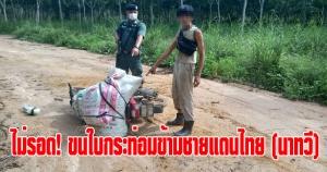 นาทวี | ไม่รอด! ลักลอบขนใบกระท่อมผ่านช่องทางธรรมชาติชายแดนไทย-มาเลย์